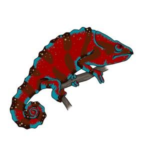 chameleon-2
